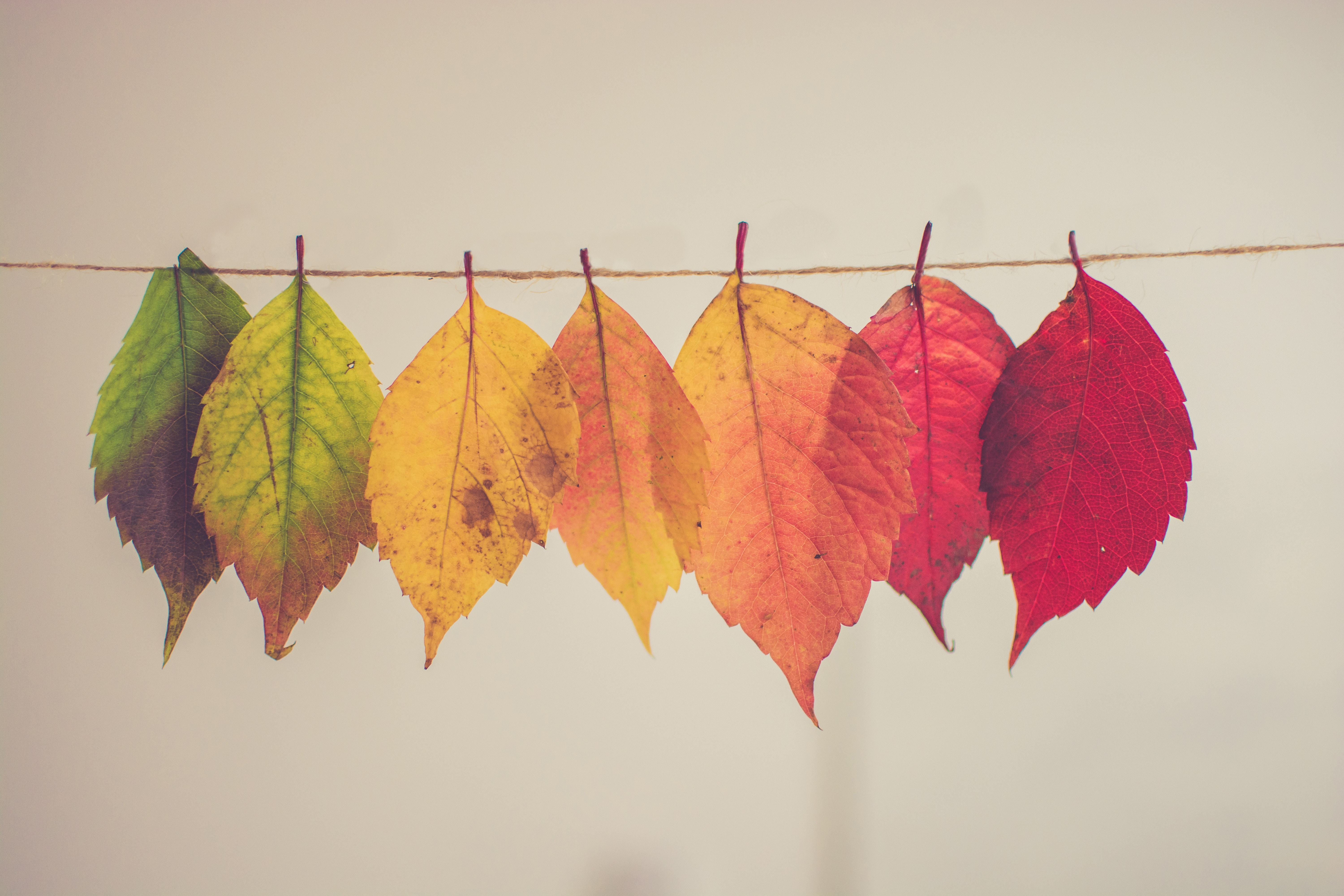 Autumn: The best time to sell Perth property?